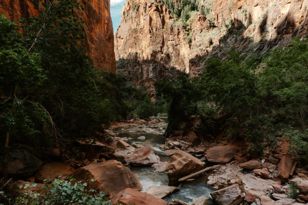 Rocky riverbed flowing through Zion National Park.