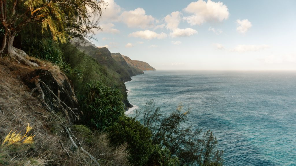 Scenic viewpoint overlooking the Kalalau Trail