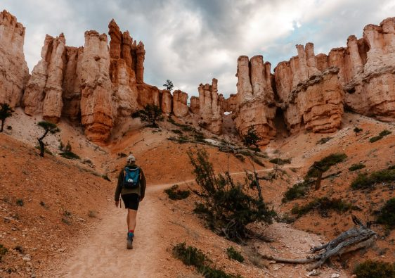 Hiker walking on the Fairyland Loop Trail with hoodoos in the distance