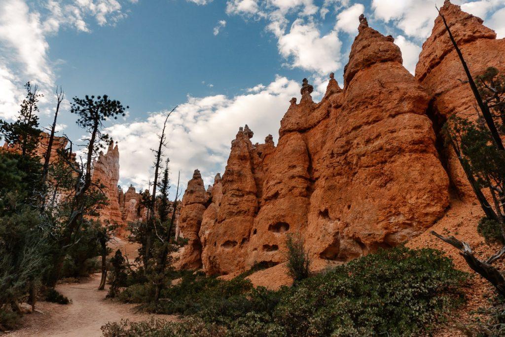 Red hoodoos of Navajo Loop Trail in Bryce Canyon
