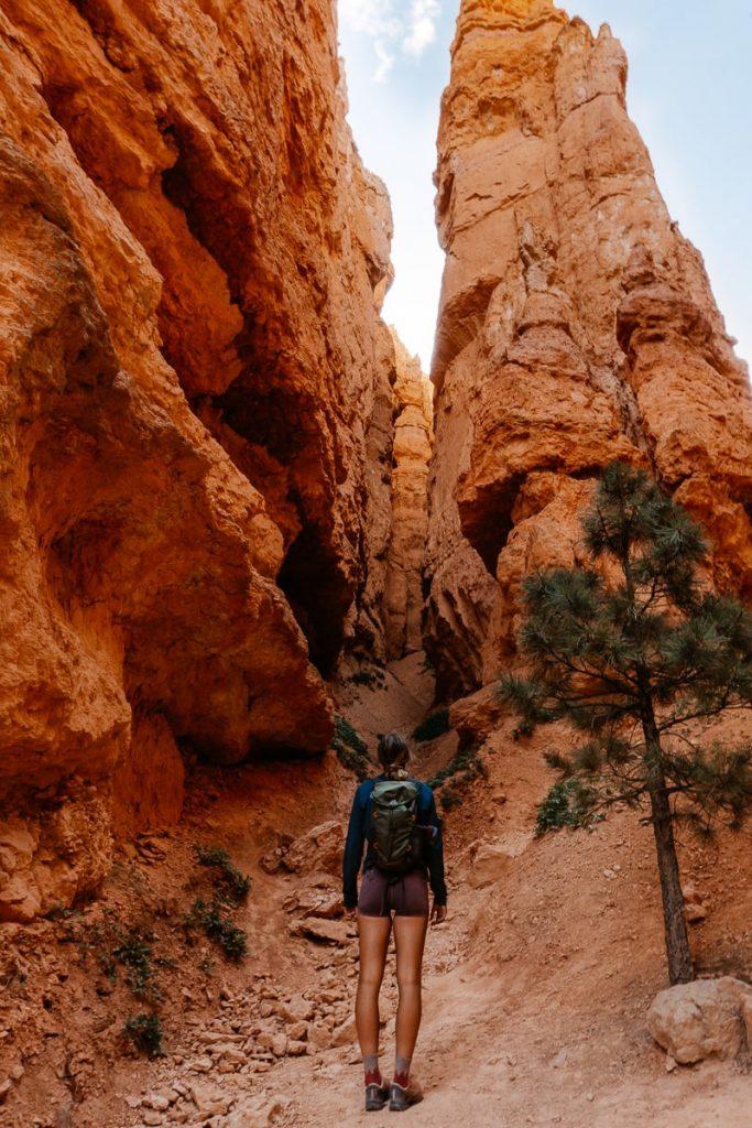 Hiker facing a slot canyon on the Navajo Loop Trail